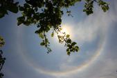 太陽光環~日暈:IMG_9083日暈.JPG