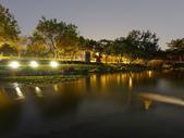 夜景 原生植物園:DSC04299 (1)2.JPG