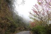 山河變色:IMG_6584 .JPG