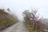 山河變色:IMG_6615.JPG
