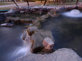 夜景 原生植物園:DSC05065.JPG