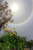 太陽光環~日暈:IMG_9295日暈.JPG