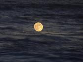 夕浪^^夕月(黃金海岸):DSC07201 (1)1.JPG
