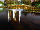 夜景 原生植物園:DSC06657 (1)1.JPG