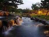 夜景 原生植物園:DSC04270 (1)1.JPG