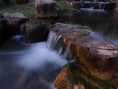 夜景 原生植物園:DSC05068.JPG