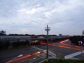 微距與夜景:DSC06772.JPG