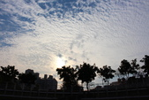 公園~試拍:IMG_8565.JPG