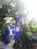 高雄~西邊(山^^水):柴山登山步道