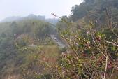 山河變色:IMG_6654.JPG