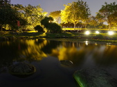 夜景 原生植物園:流動的水面