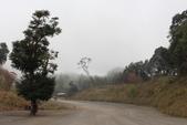 山河變色:IMG_6596.JPG