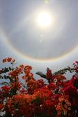 太陽光環~日暈:IMG_9221日暈.JPG