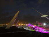 夜景 新光碼頭 85大樓:DSC04167.JPG