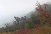 山河變色:IMG_6629.JPG