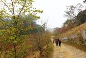 山河變色:IMG_6626.JPG