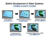 改善工業/家庭用水/仰制細菌&預防結詬-水處理節能方法:投影片14.JPG