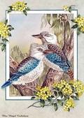 花鳥集:177254692_m.jpg