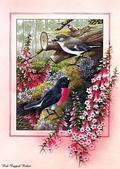 花鳥集:177254494_m.jpg
