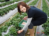 大湖採草莓&豆腐街吃午餐:DSC04226.JPG
