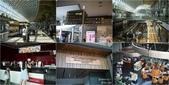 20150720-0726新加坡:cats4.jpg