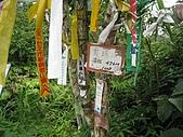 平溪中央尖、臭頭山:IMG_3396.jpg