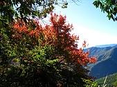 奇萊南峰、南華山:IMG_9970.jpg