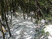 雪蓋復興尖、冰封塔曼山:IMG_2470.jpg
