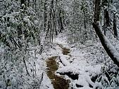 北插雪景:P3050080