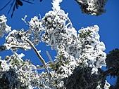 雪蓋復興尖、冰封塔曼山:IMG_2513.jpg