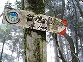 新竹五峰鳥嘴山:IMG_7216.jpg