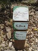 水社大山:IMG_2573.jpg