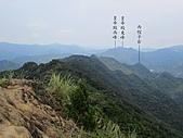 東亞最美麗的百合:IMG_0799.jpg
