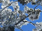 雪蓋復興尖、冰封塔曼山:IMG_2514.jpg