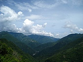 拉拉山、順遊神木區:IMG_7921.jpg