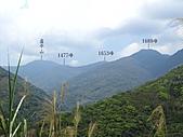 臺灣梵尼蘭:IMG_3625.jpg