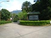 桂山路上大桶山:IMG_1785.jpg