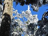 雪蓋復興尖、冰封塔曼山:IMG_2539.jpg