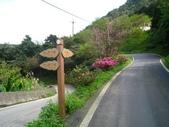 桂山路上大桶山:IMG_1788.jpg