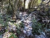 雪蓋復興尖、冰封塔曼山:IMG_2427.jpg