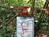 東勢格古道、臭頭山:IMG_6896.jpg