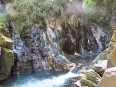 向陽、三叉、嘉明湖、栗松野溪溫泉---DAY 3:IMG_1700.jpg