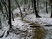 北插雪景:P3050073