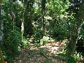 大溪金面山:IMG_7400.jpg