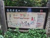 霞喀羅古道養老至武神駐在所(22K~14.5K):IMG_6771.jpg