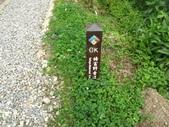特富野古道:IMG_6500.jpg