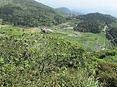 七星山主、東峰:IMG_4466.jpg