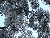 雪蓋復興尖、冰封塔曼山:IMG_2540.jpg