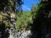 向陽、三叉、嘉明湖、栗松野溪溫泉---DAY 3:IMG_1709.jpg