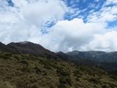 向陽、三叉、嘉明湖、栗松野溪溫泉---DAY 2:IMG_1639.jpg